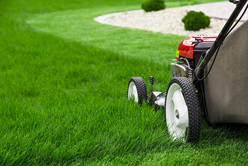 lawn mowing and gardening services